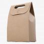 Box Bottom Kraft Bags