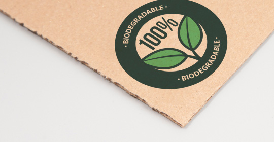 biodegradable box material